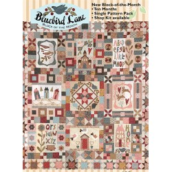 Block of the Month Bluebird...