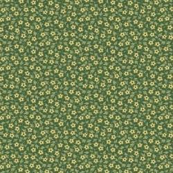 Evergreen 9178G