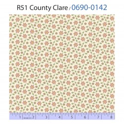 County Clare 0690 0142