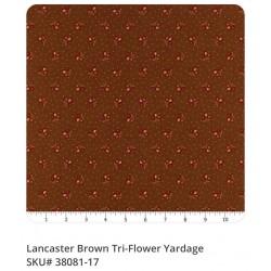 Lancaster 38081 17