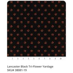 Lancaster 38081 19
