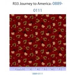 Journey to America 0889-0111
