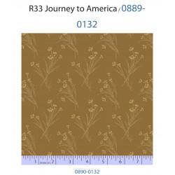 Journey to America 0889-0132