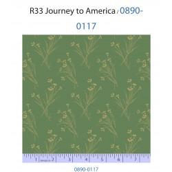 Journey to America 0890-0117