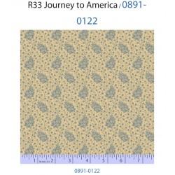 Journey to America 0891-0122