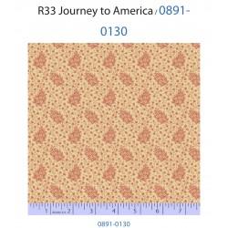 Journey to America 0891-0130