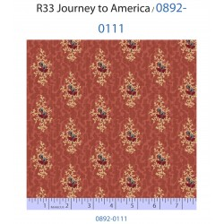 Journey to America 0892-0111