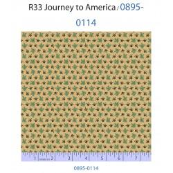Journey to America 0895-0114
