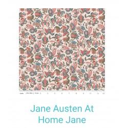Jane Austen At home Jane